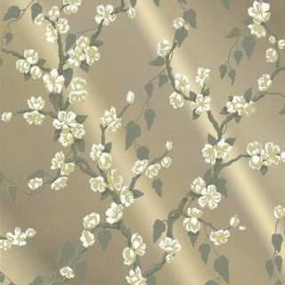 Sakura Wallpaper 0247SAMETAL by Little Greene
