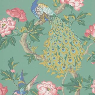 Pavona Wallpaper 0245PAVIVIE by Little Greene
