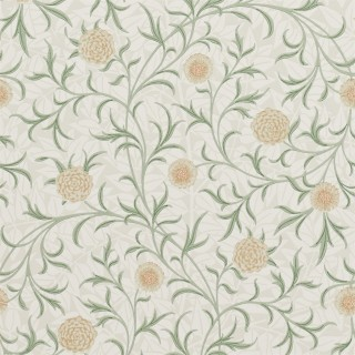 Scroll Wallpaper 210365 by William Morris & Co