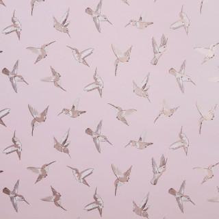 Oasis Wallpaper Hummingbird Collection W0109/01