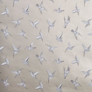 Oasis Wallpaper Hummingbird Collection W0109/02