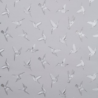 Oasis Wallpaper Hummingbird Collection W0109/03