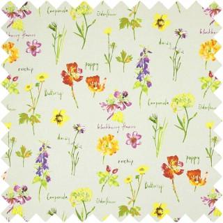 Prestigious Textiles Country Fair Wild Flowers Fabric Collection 5814/031