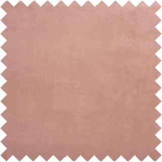 Belgravia Fabric 3833/213 by Prestigious Textiles