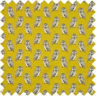 Prestigious Textiles Owl Fabric 5046/526