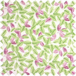 Prestigious Textiles Pickle Bayleaf Fabric Collection 5767/284