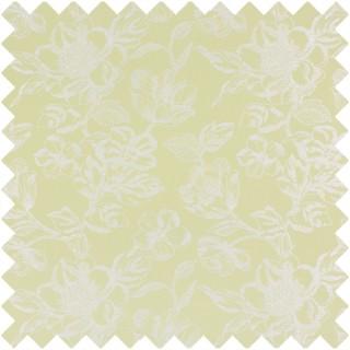 Prestigious Textiles Templeton Darwin Fabric Collection 1394/709