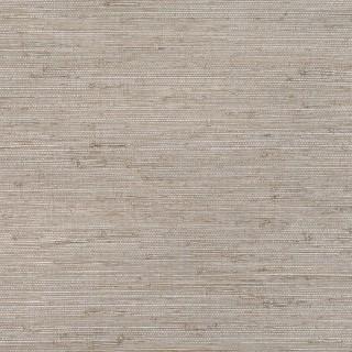 Zinc Cerium Wallpaper ZW128/03