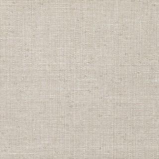 Zinc Edenite Wallpaper ZW133/04