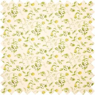 Orchard Blossom Fabric DAPGOR202 by Sanderson
