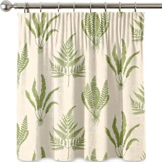 Woodland Ferns Fabric DAPGWO202 by Sanderson