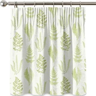 Angel Ferns Fabric 221928 by Sanderson