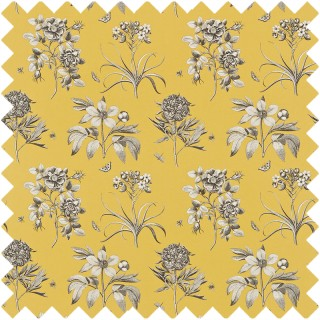 Etchings and Roses Fabric DPFPET204 by Sanderson