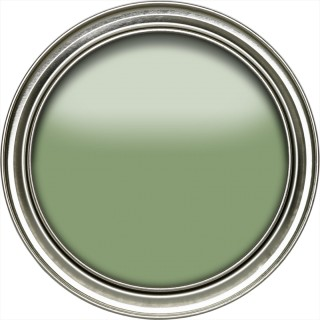 Botanical Green Active Emulsion Paint by Sanderson