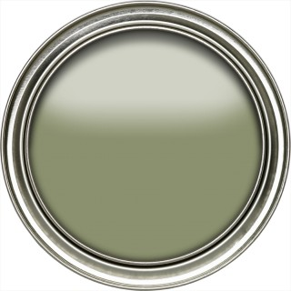 Canopy Green Active Emulsion Paint by Sanderson