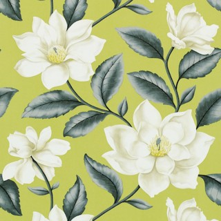 Sanderson Wallpaper A Painters Garden Grandiflora Collection DAPGGR101