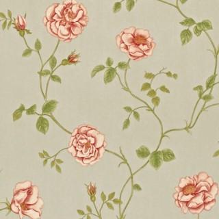 Sanderson Wallpaper A Painters Garden Rosalie Collection DAPGRO103