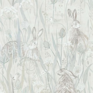 Dune Hares Wallpaper 216518 by Sanderson