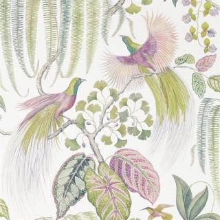 Bird of Paradise Wallpaper 216654 by Sanderson