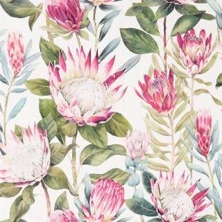 King Protea Wallpaper 216646 by Sanderson