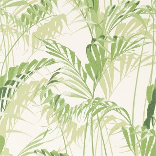 Palm House Wallpaper 216643 by Sanderson