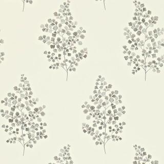 Angel Ferns Wallpaper 211997 by Sanderson