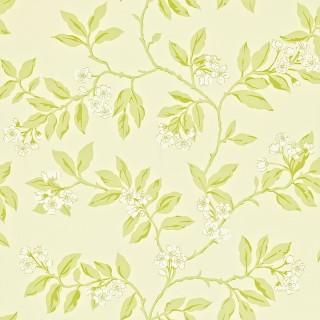 Blossom Bough Wallpaper 211992 by Sanderson