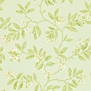 Blossom Bough Wallpaper 211993 by Sanderson