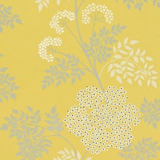 Cowparsley Wallpaper DOPWCO105 by Sanderson