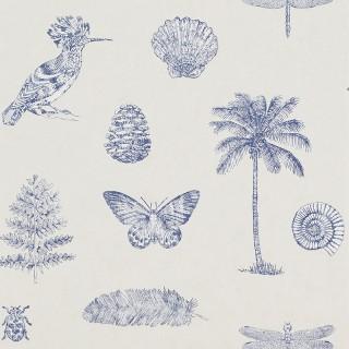 Cocos Wallpaper 213385 by Sanderson