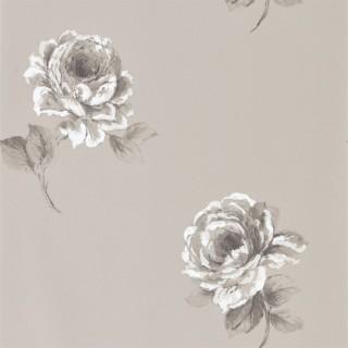 Rosa Wallpaper 216279 by Sanderson