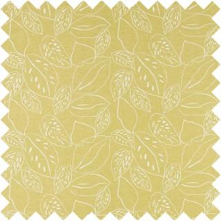 Orto Fabric 132857 by Scion