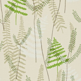 Athyrium Wallpaper 110215 by Scion