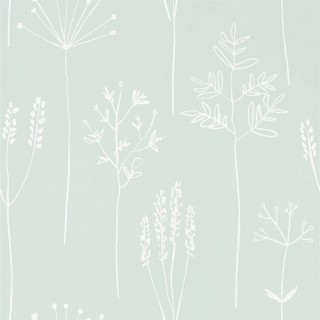 Stipa Wallpaper 112020 by Scion
