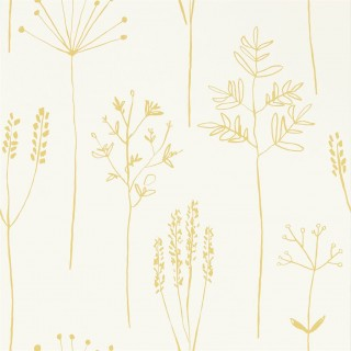 Stipa Wallpaper 112021 by Scion
