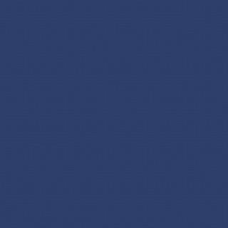 (2055) Blue