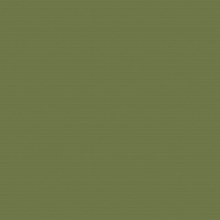 (4567) Olive Green