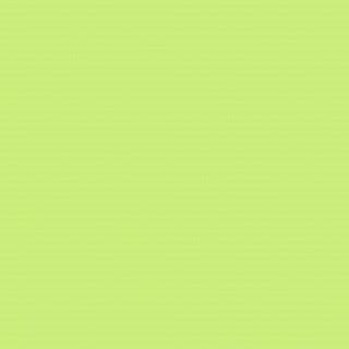 (4569) Pale Green