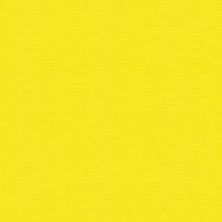 (4073) Bright Yellow