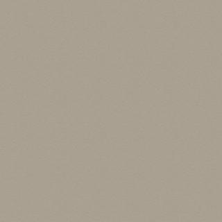 (6514) Fabulous Burned Grey