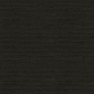 (6519) Structured Black