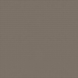 (4574) Warm Grey