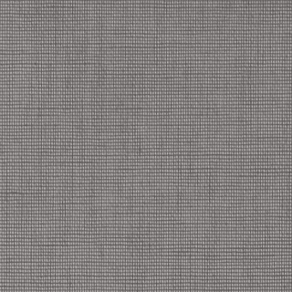 (4161) Grey