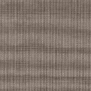 (4163) Warm Grey