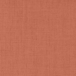 (4164) Orange