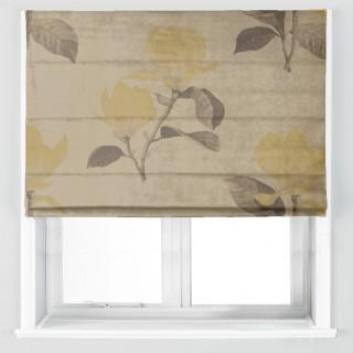 Kobushi Magnolia Fabric 322461 by Zoffany