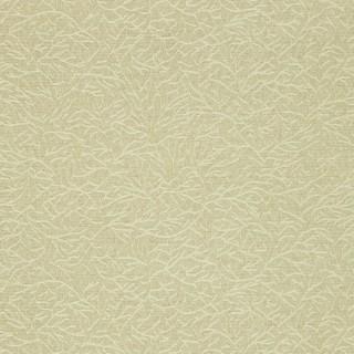 Ribbon Coral Wallpaper 312127 by Zoffany