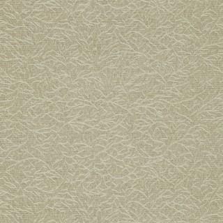 Ribbon Coral Wallpaper 312128 by Zoffany