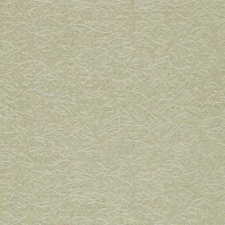 Ribbon Coral Wallpaper 312129 by Zoffany